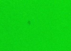 flecken beim grüntest